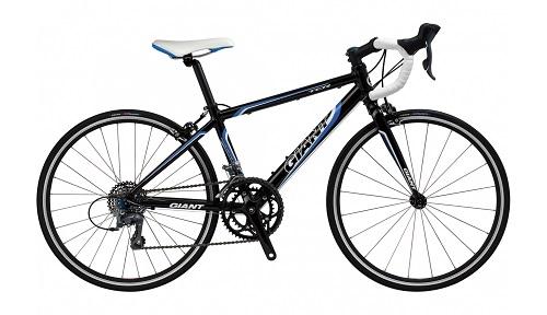Giant fiets Bikester